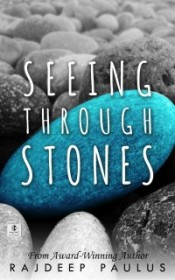 Seeing Through Stones - Rajdeep Paulus